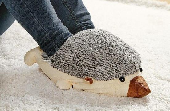 ježek-na-nogah.png